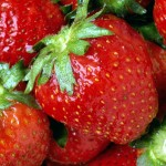 strawberries-camelcsa-090610