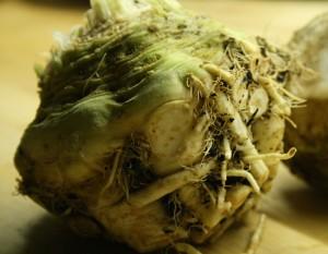 celeriac-camelcsa