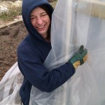 First polytunnel cover 06-03-11 17