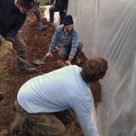 First polytunnel cover 06-03-11 21