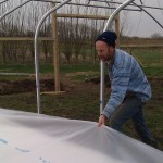 First polytunnel cover 06-03-11 6