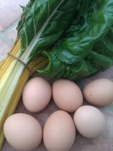trouchia-chard-eggs-camelcsa-270811