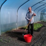 raking-beds-polytunnel-camelcsa-110414
