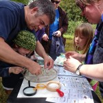 OFS2014-pond-dipping2-camelcsa
