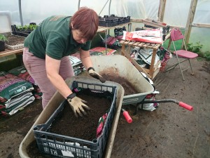 seed-planting-camelcsa-0515