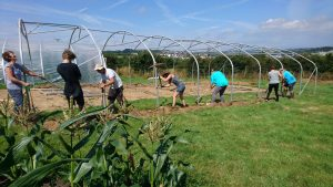 trench-digging-polytunnel-camelcsa-250719