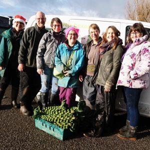 Christmas-vegbox-picking-packing-team-camelcsa-201219