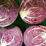 red-cabbage-camel-csa-120221